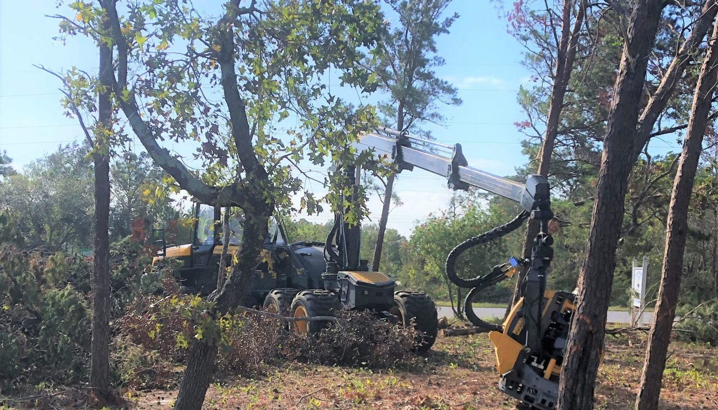 Hauling Away specializes in removing debris from storms and other disasters. Ponsse Cobra is shown during clean-up work following Hurricane Sally last year.